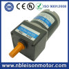 10W 12V 24V DC Brush Gear Motor