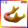 Hot Sell Standard Teeth Jaw Model/Dental Models for Teaching