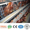 Layer Chicken Automatic Cage Poultry Farm Equipment Ventilation System