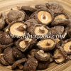 Perfect Shape and Dileciouse Dried Smooth Shiitake Mushroom