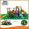 China Amusement Park Outdoor Playground Equipment Txd16-Bh10701