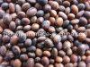 Soya Beans (brown)