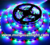 Super Bright 12V Waterproof 5050 300SMD RGB LED Light Strip