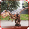 Realistic Dinosaur Costume with Person Inside