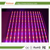 Keisue Plant Factory LED Grow Light Fixture