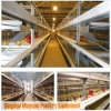 Poultry Farming Baby Chick Cage of Battery H Frame