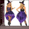 Sexy Party Costume, Womens Classic Witch Costume (4889)