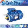 Hot Sales Y2 Three-Phase Cast Iron Induction Motor