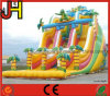 Customized Inflatable Water Slide for Sale