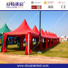 Outdoor Gazebo Tent Pagoda Tent with Different Colors