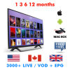 North American IPTV 3500 Channel French/Italy/Spain IPTV Subscription Free Lifetime