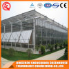 Commercial Steel Frame/ Aluminum Profile Glass Greenhouse for Flower