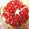 Pomegranate Peel Extract Powder, Polyphenol 40%, UV