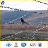 Galvanized Barbed Iron Wire (HPRW-0606)