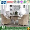 Dining Table Outdoor Furniture PE Rattan Furniture Set (TG-1653)