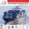 LCL/FCL Sea Freight From Shenzhen/Shanghai to Bandar Abbas of Iran