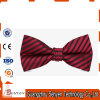 Nice Looking Men Colorful Party Decoration Tie Bow Tie