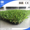 Economically Grass Turf Both for Landscaping and Leisure