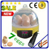 Hhd Ce Approved Holding 7 Eggs Cheap Mini Poultry Egg Incubator