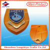 Southern District Council Standing Souvenir Wooden Shield Plaque Enamel Metal Plaque (LZY-P011)