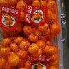 Exporting Quality Standard Fresh Baby Mandarin