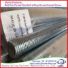 "ASTM 1/4′ 3/8"" 1/2"" 1"" 2"" Thread Threaded Rod with Electro Galvanized Zinc Plated"