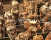 Healthy Food Brown Dried Smooth Shiitake Mushroom From Hubei Yongxing