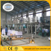 Factory PE Coating/Making Machine