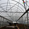 PE Plastic Po Greenhouse Film for Covering Vegetables and Fruits