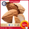 Wholesale Natural Organic Almonds for Nuts Snack Food Export