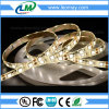 UL Certified 5050 Constant Current Lighting Strip LED