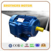 AC Three Phase Electric Motor