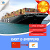 Shipping Logistics Agent Sea Freight From Guangdong to Cyprus
