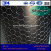 Galvanized Double Twisted Hexagonal Metal Wire Mesh