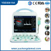 Ysd350 Veterinary Color Duoppler Ultrasound Machine