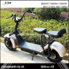 2017 Fashion 1000W Harley Electric Scooter City Coco (ZYES-004)