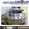 Vendor Stainless Steel Flange for Tube Sheet Connection Flange