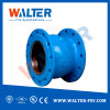 Non-Slam Check Valve for Water Pump