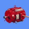 IEC Y2 Three Phase Cast Iron Case Asynchrous Electric Motor