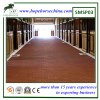 Dog Bone Rubber Paver for Horse Stall