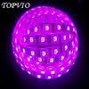 5m SMD5050 Flexible LED Light Strip Pink Ribbon