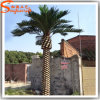 New Design Fiberglass Fake Artificial Date Palm Tree