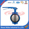 Most Professional Manufacturer of Wafer Type Butterfly Valve in China