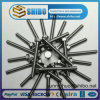 High Quality Molybdenum Scerws, Mo Standard Parts