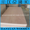 (furniture, packing, decorative construction) Cheap Okoume Plywood