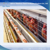 Chicken Cages Layer Chicken Cage