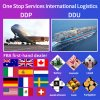 Cheap Sea Shipping Services Fba Amazon Freight Forwarder From China to Switzerland/Europe/Worldwide Professional Fast Reliable Logistics Agent