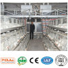 Broiler Chicken Cage Automatic Chicken Farm Equipment