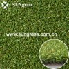 High Densty Sports Synthetic Grass for Golf Field (PP015DS)