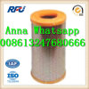 High Quality Air Filter for Man C25730/1